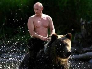 Wladimir Putin reitet den russischen Baeren oder bindet dem Westen einen auf Russland Amerika Sanktionen Propaganda